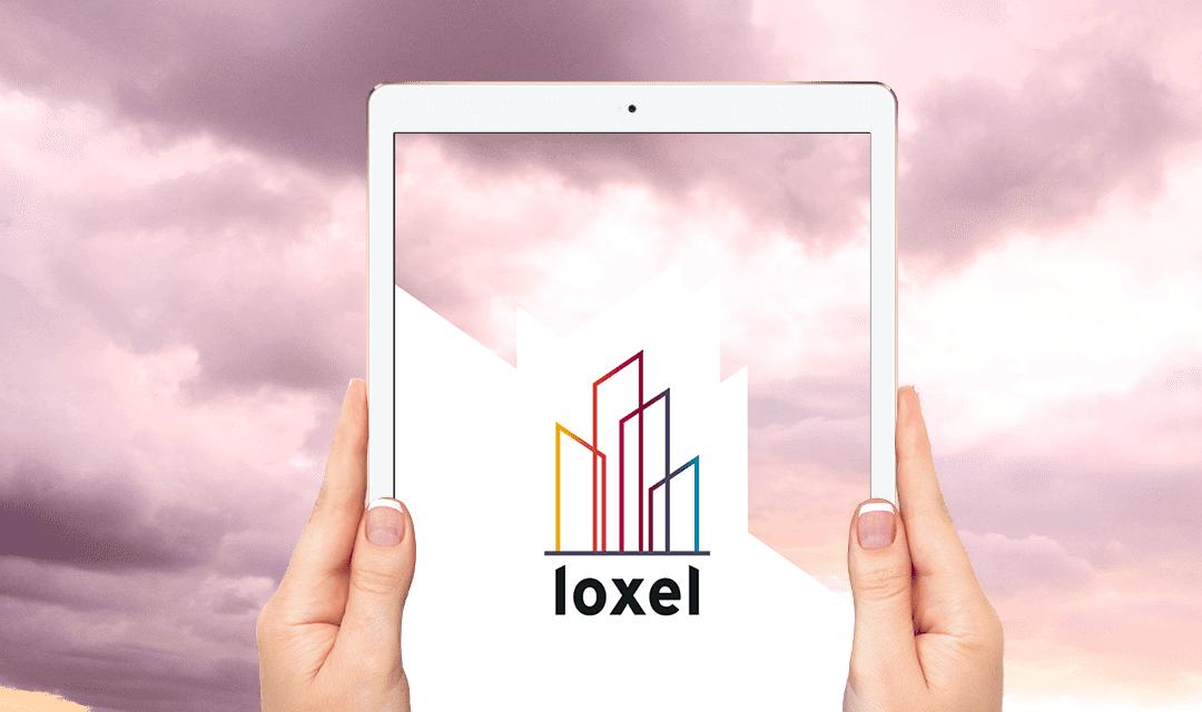 2019 rime avec peau neuve chez LOXEL !
